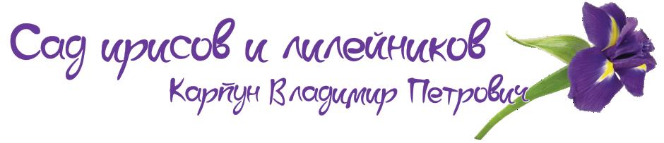 Сад бородатых ирисов Карпуна Владимира Петровича